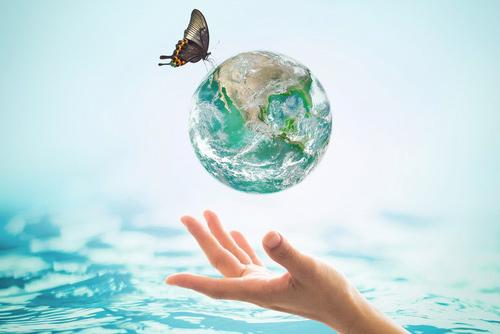 美しい地球環境への挑戦